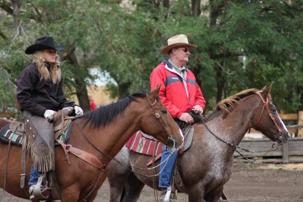 Horses for work